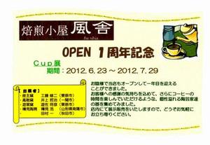 Cupdm20120615